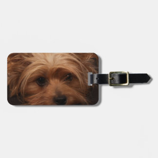 Yorkie or Your Dog Picture Luggage Tag