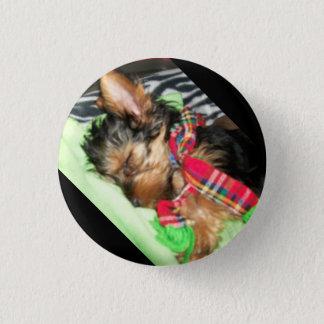 Yorkie Snuggle 3 Cm Round Badge
