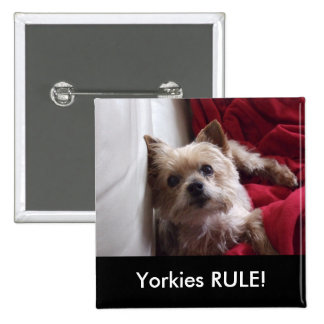 Yorkies RULE! Button