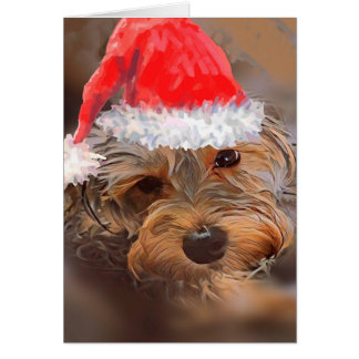 Yorkipoo Christmas Card