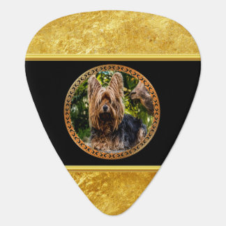 Yorkshire brown and black terrier gold foil design plectrum