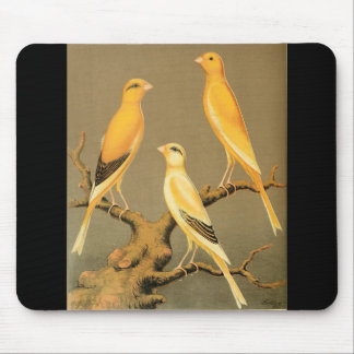 YORKSHIRE CANARIES MOUSE PAD