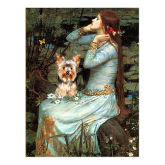 Yorkshire Terrier 17 - Ophelia Seated Postcard