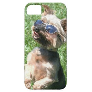 Yorkshire Terrier Barely There iPhone 5 Case