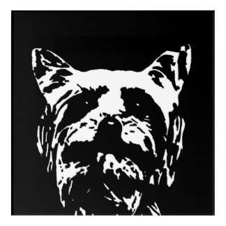 Yorkshire Terrier Black & White Acrylic Wall Art