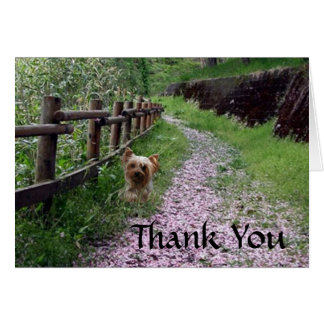 Yorkshire Terrier Card Thank You
