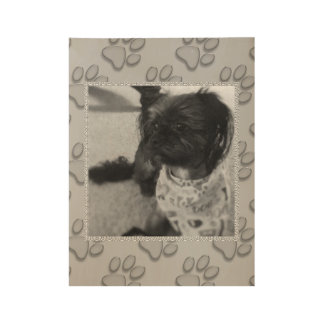 Yorkshire Terrier Chilling Wood Poster