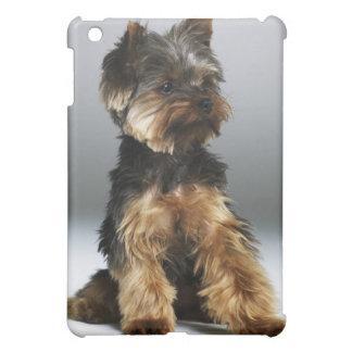 Yorkshire terrier, close-up iPad mini case