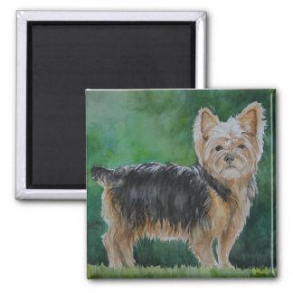 Yorkshire Terrier Dog Art Watercolor Magnet