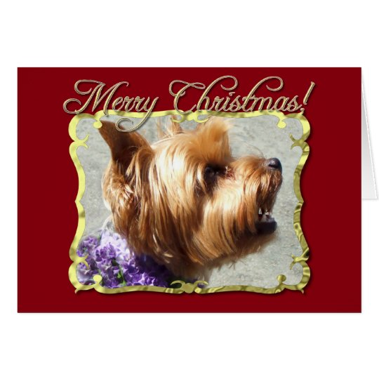 Yorkshire Terrier dog Card