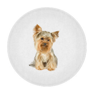 Yorkshire Terrier dog cute glass cutting board