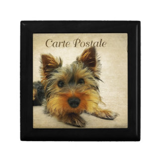 Yorkshire Terrier Dog Gift Box