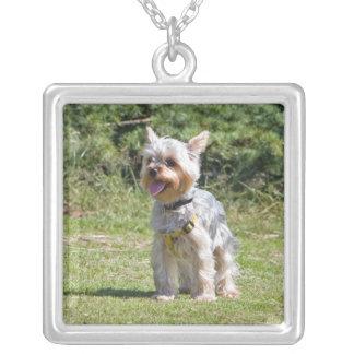 Yorkshire Terrier dog necklace, pendant, gift idea