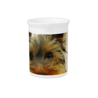 Yorkshire Terrier Dog Pitcher