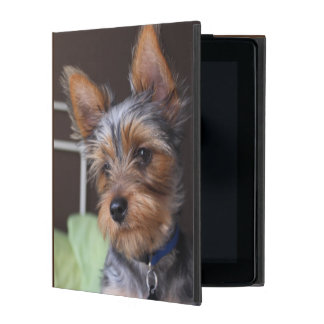 Yorkshire Terrier dog, yorkie cute ipad case