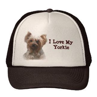 Yorkshire Terrier Hat