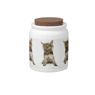 Yorkshire Terrier Painting Candy Jar