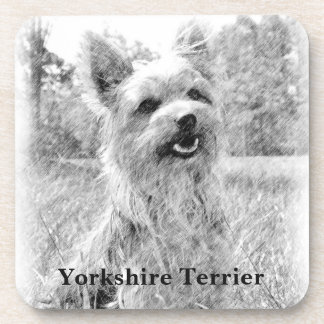 Yorkshire Terrier Pencil Drawing Beverage Coaster