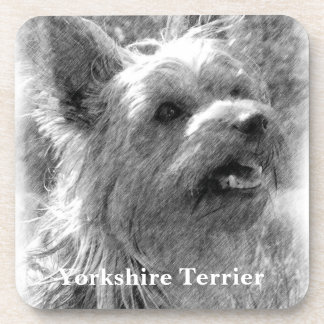 Yorkshire Terrier Pencil Drawing Beverage Coasters