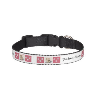 Yorkshire Terrier Pet Collar