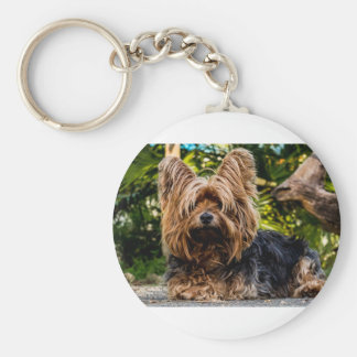 Yorkshire Terrier Pet Dog Key Ring