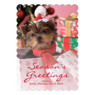 Yorkshire Terrier Puppy and Christmas 2 Card