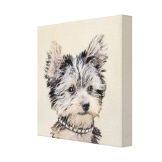 Yorkshire Terrier Puppy Canvas Print