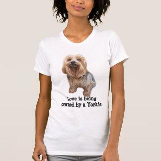 Yorkshire Terrier So Cute Ladies Shirt