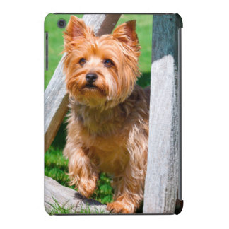 Yorkshire Terrier standing in a wagon wheel iPad Mini Retina Covers