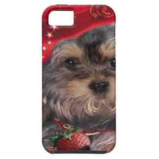 Yorkshire Terrier Strawberry Products iPhone 5 Cover
