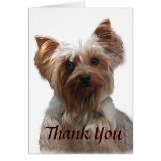 Yorkshire Terrier Thank You Card