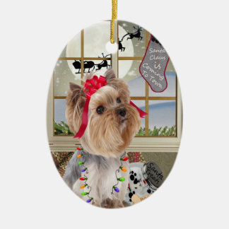 Yorkshire Terrier Watching For Santa Ornament