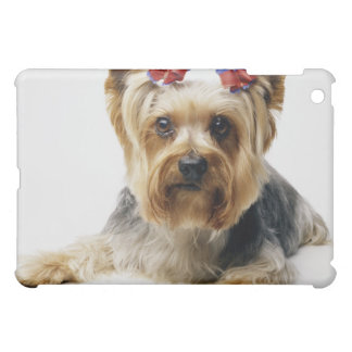 Yorkshire terrier wearing red bows iPad mini cases