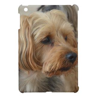 Yorkshire Terrier Zac iPad Mini Covers