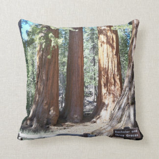Yosemite Big Trees  American MoJo Pillow