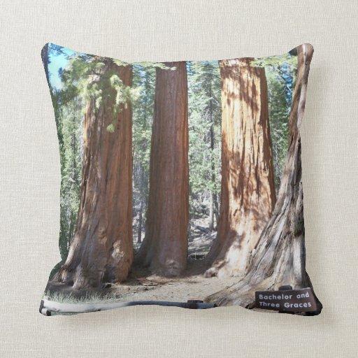 Yosemite Big Trees  American MoJo Pillow