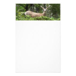 Yosemite Deer Nature Animal Photography Customised Stationery