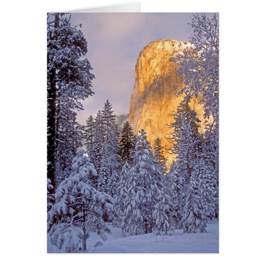 Yosemite - El Capitan lit by sunlight Card