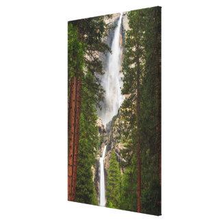 Yosemite Falls, California Canvas Print