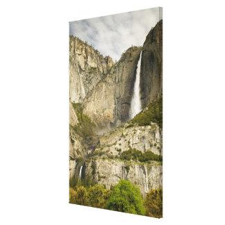 Yosemite Falls in the spring, Yosemite National Pa Canvas Print