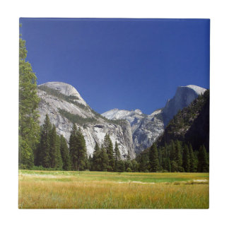 Yosemite Park MEADOWS PHOTOGRAPHY BEAUTY NATURE MO Tiles