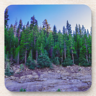 Yosemite Valley Forest & Sky Beverage Coasters