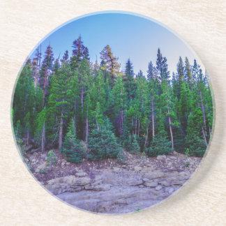 Yosemite Valley Forest & Sky Sandstone Coaster