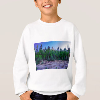 Yosemite Valley Forest & Sky Sweatshirt