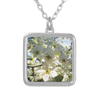 Yoshino Cherry Tree Blossoms Silver Plated Necklace