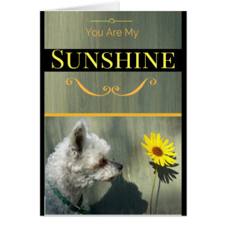 You Are My Sunshine Dog and Flower Greeting Card