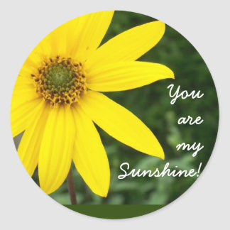 'You are my Sunshine!' Stickers