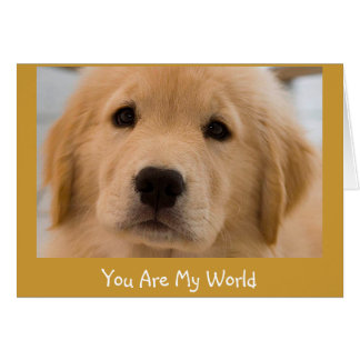 You Are My World - Yellow Lab Valentine Note Card