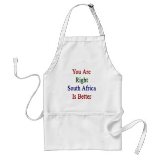 You Are Right South Africa Is Better Adult Apron