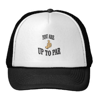 you are up to par cap